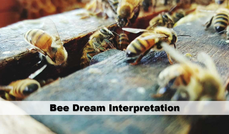 Image result for bees in dream