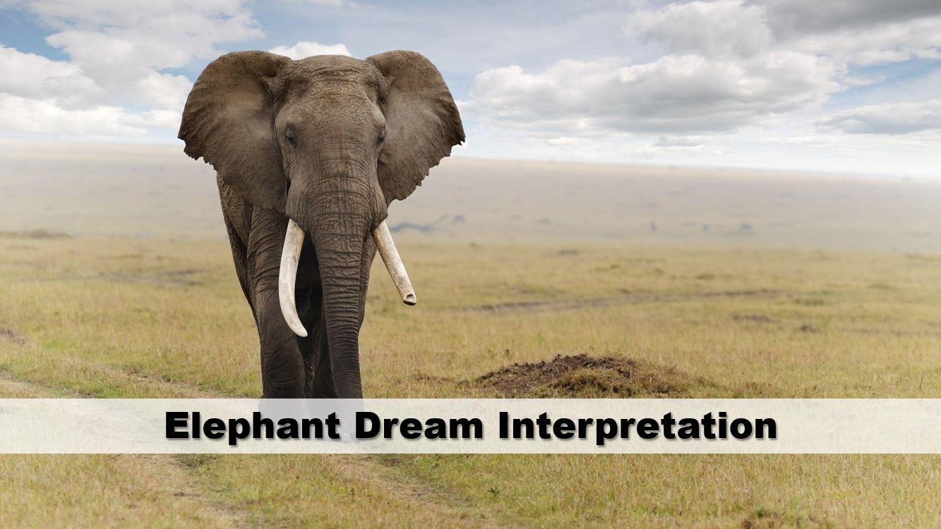 Elephant Dream Interpretation
