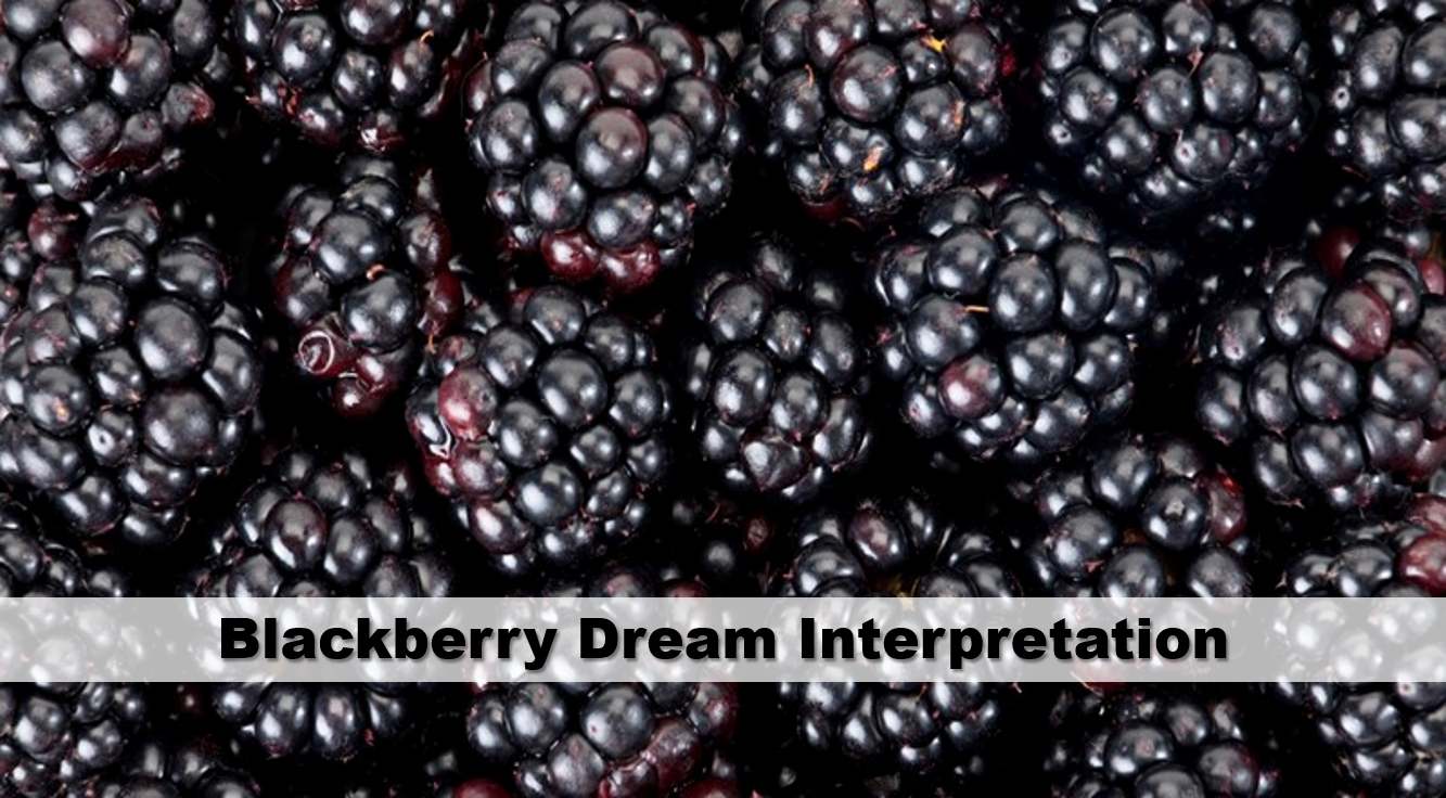 Blackberry Dream Interpretation