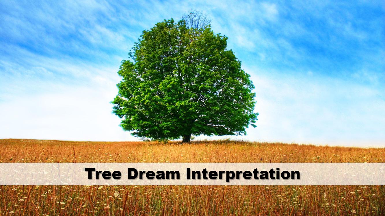 Tree Dream Interpretation