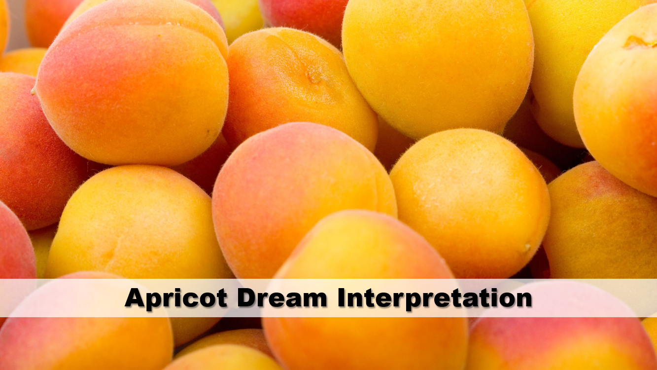 Apricot Dream Interpretation