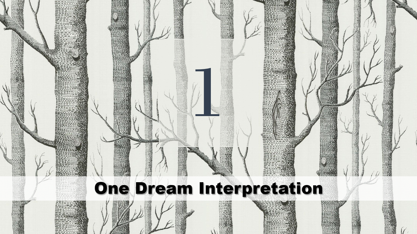 One Dream Interpretation