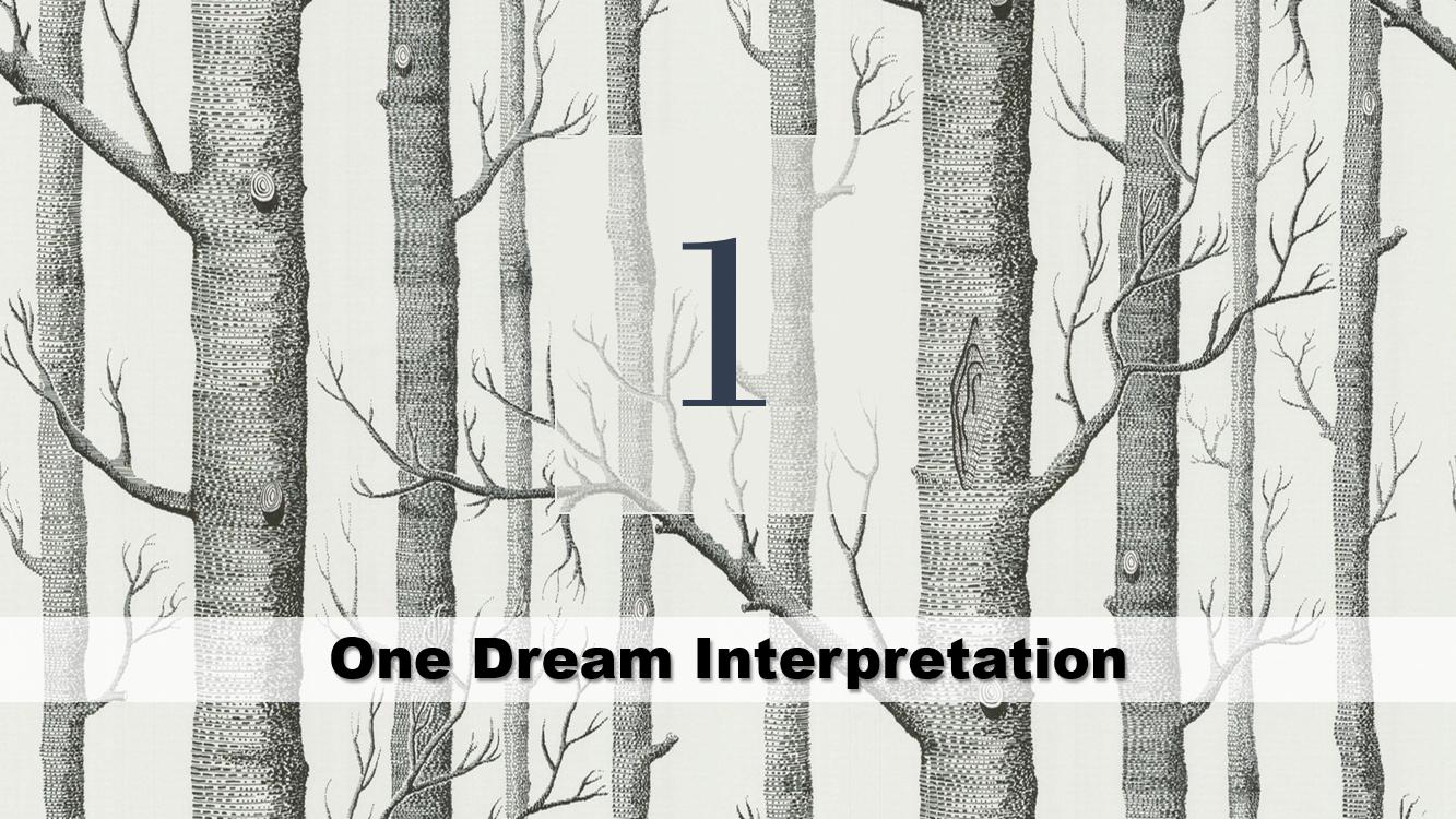 One Dream Interpretation
