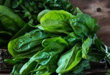 Spinach Dream Interpretation