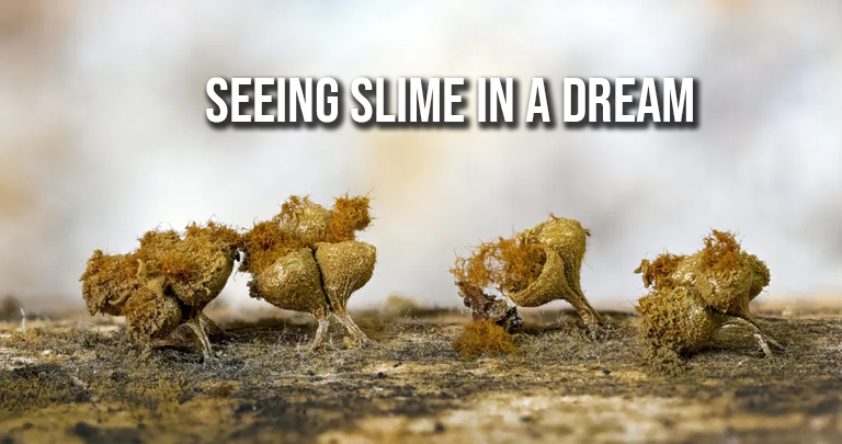 Seeing Slime In A Dream